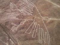 納茲卡線 (Nazca Lines):鷹