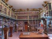擁有許多原典手稿的美洲圖書館 (Biblioteca América)
