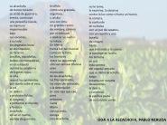 oda_alcachofa