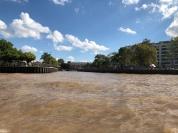 巴拉那河數百支流和虎河匯聚的三角洲