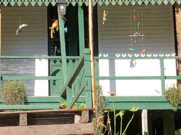 三角河灘沿途的泛舟驛站,鸚鵡觀賞遊客