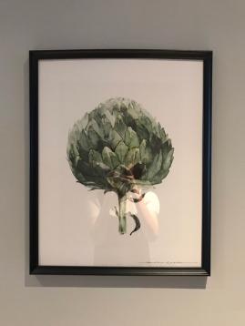 琉球飯店掛的朝鮮薊畫