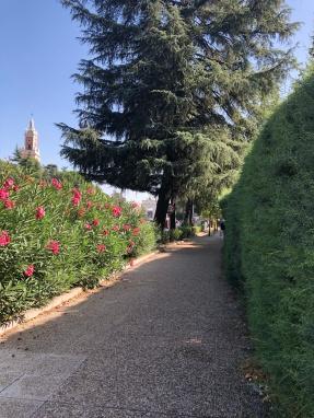 漫步到書院綠蔭步道