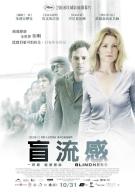 2008 年從小說改編的中文電影片名