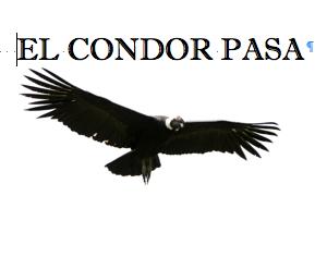condor_pasa