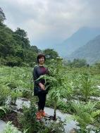 被「蔬菜之皇」環繞的朝鮮薊女王?