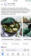許瓊方博士提供照片:名牌出綠色烤漆新鑄鐵鍋,用朝鮮薊色澤當宣傳