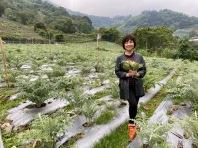 手握幾朵朝鮮薊,向廖總夫婦和大自然致意