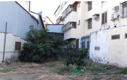 這個芒果樹的位置是當時種植土芭樂的位置,也是阿嬤滑倒,導致中風的地方